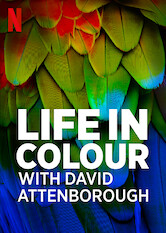 Search netflix Life in Color with David Attenborough